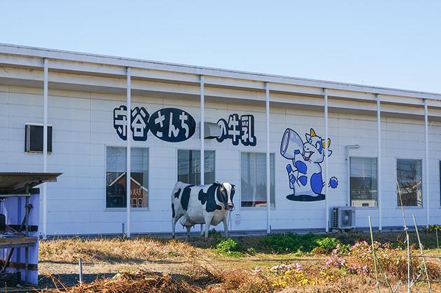 守谷さんちの牛乳牛