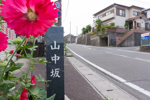 いつもの風景No.6